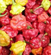 Local Seasoning Pepper